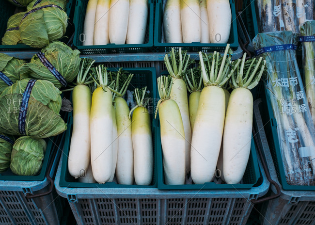 Daikon root for sale at a Japanese farmer's market