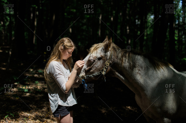 Girl petting a horse's face