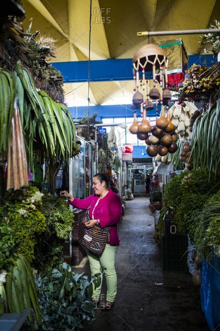 Bogota, Colombia - December 4, 2013: Woman buying produce at Bogota market