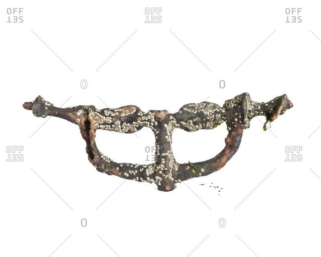 Bike handlebars covered with barnacles