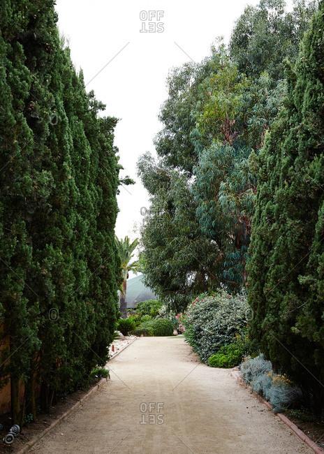 Path through a landscaped garden