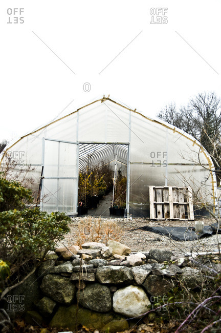 A greenhouse filled with shrubs in Conneticut