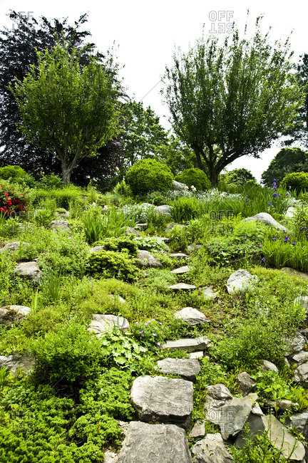 Stepping stones leading through a garden in New York