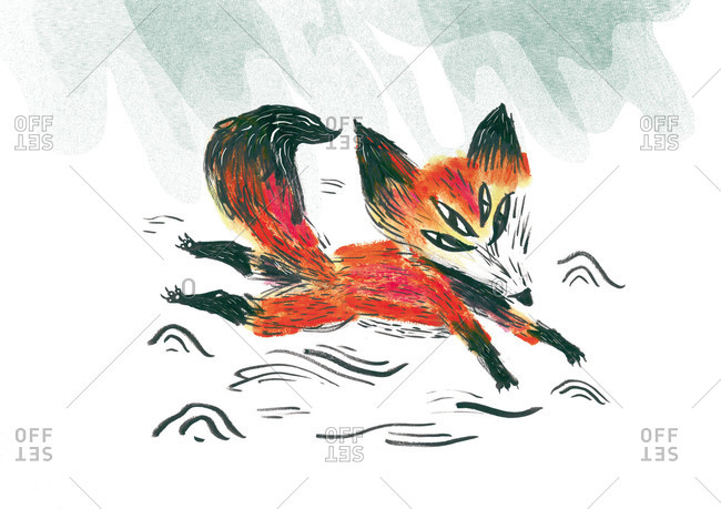 Fox with four eyes
