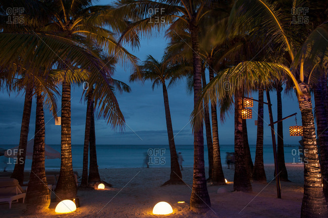 Discovery Shores Resort, Boracay, Philippines - February 20, 2013: Palm trees on resort beach at night