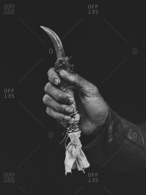 Banana plantation worker's hand holding knife, Philippines