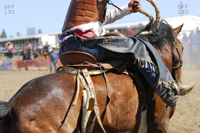Cowboy on horseback at a rodeo