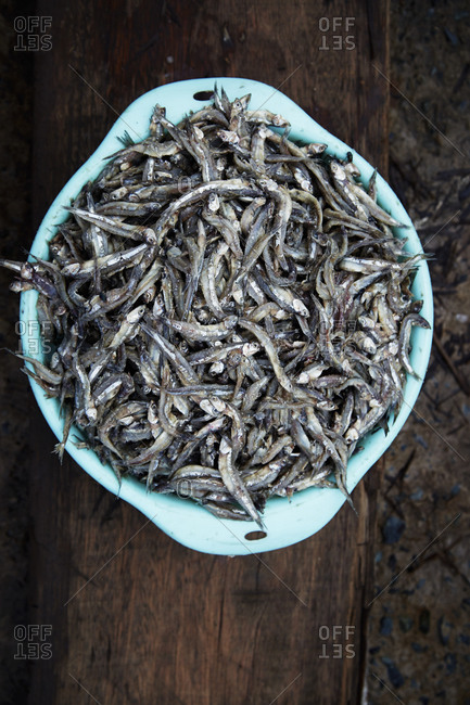 Overhead view of a container of fresh anchovies