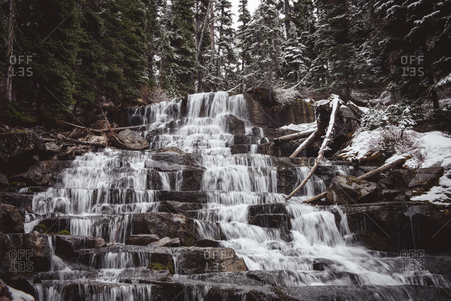 Water flowing down rocks in a forest in Joffre Lakes Provincial Park, Canada