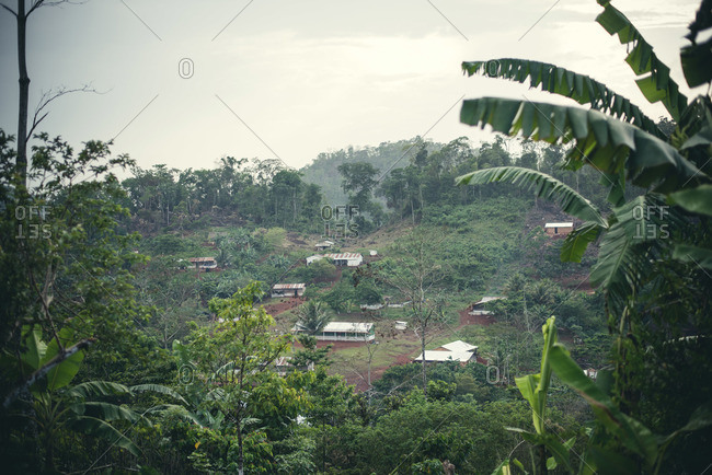 A Guatemalan village in the jungle