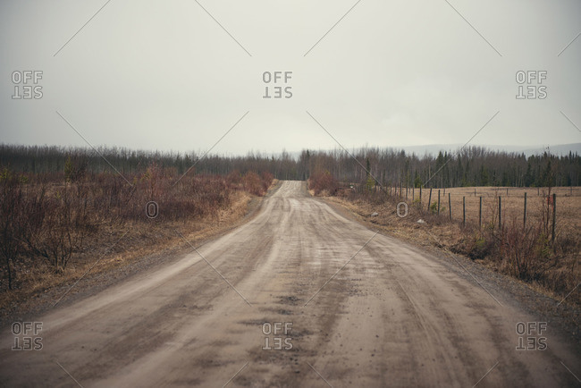 A dirt road in Smithers, Canada