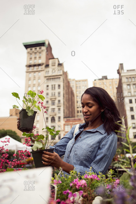 A woman compares flowering plants at a farmer's market