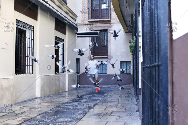 A jogger turns a corner and sends pigeons flying