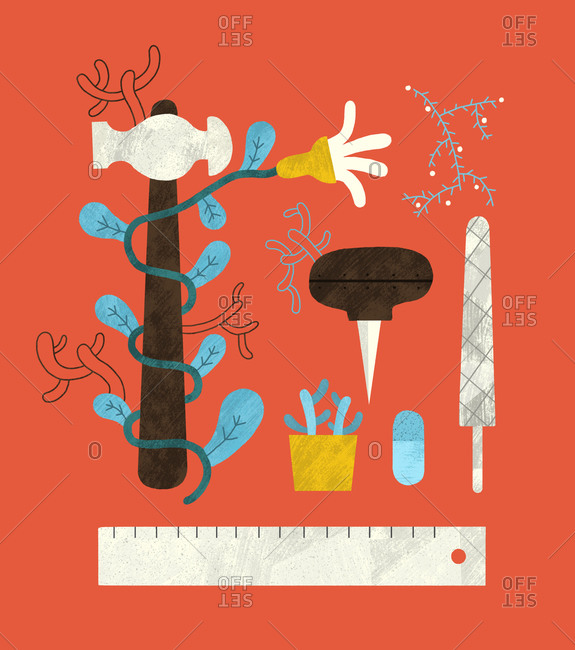 Tools and plants