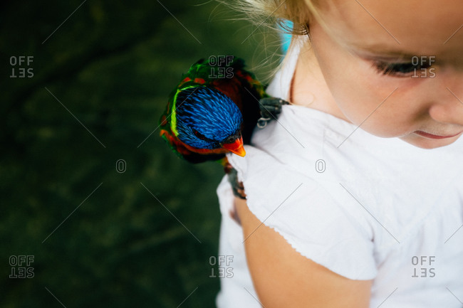 Little girl with a bird on her shoulder