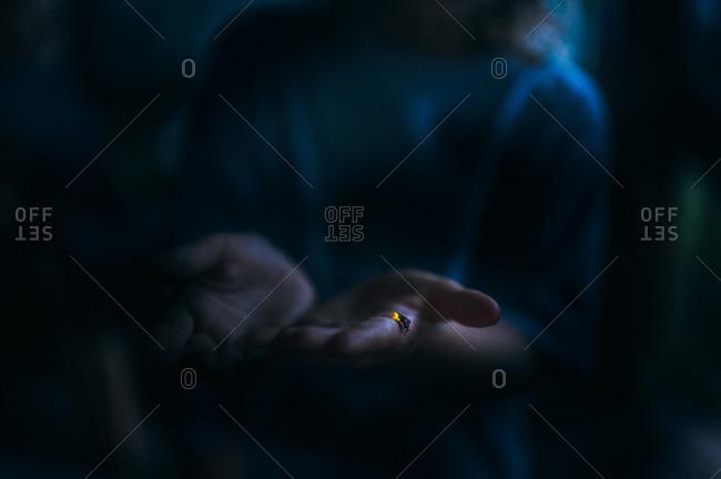 Lightning bug illuminating itself in a child's hands