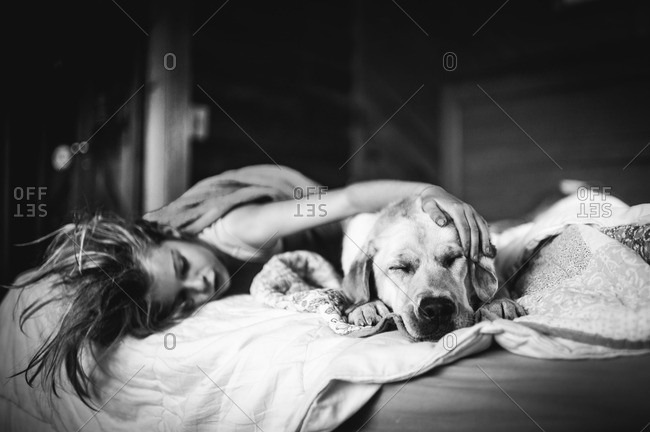 Child petting Labrador retriever on bed