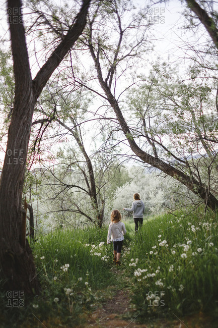 Girls walking on a wooded path