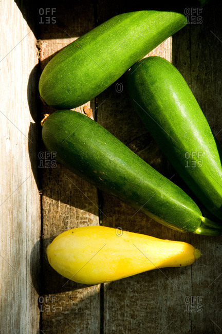 Freshly picked squash and zucchini at a Louisiana farm