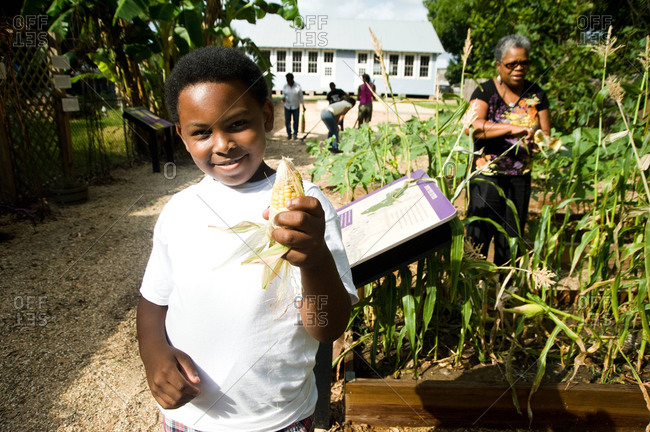 Donaldsonville, Louisiana - May 30, 2012: Kathe Hambrick-Jackson's grandson holds a freshly picked ear of corn in the Freedom Garden at the River Road African American Museum