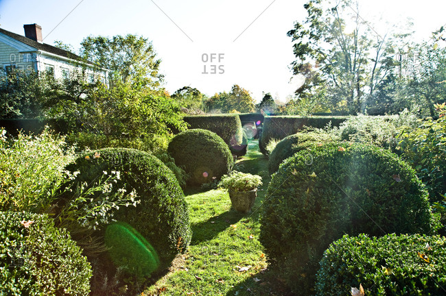 North Salem, New York - October 9, 2010: Shrubs in Page Dickey's garden