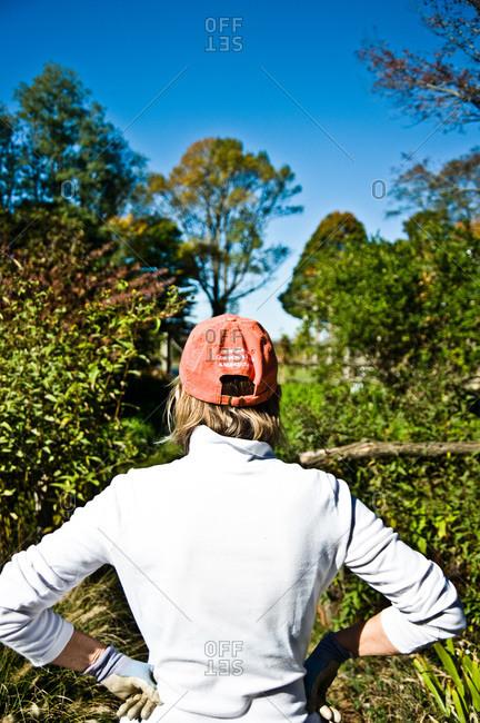 North Salem, New York - October 9, 2010: Page Dickey surveys her yard