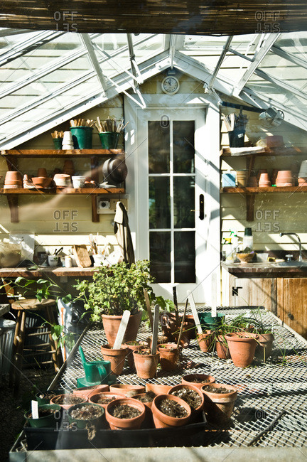 A greenhouse filled with pots
