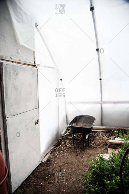 A greenhouse on an urban permaculture farm