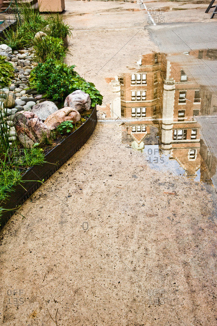 The edging of rain garden