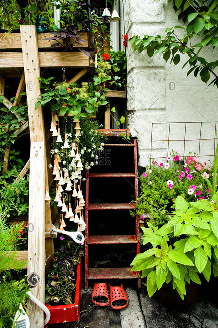 A stairway in a rooftop garden