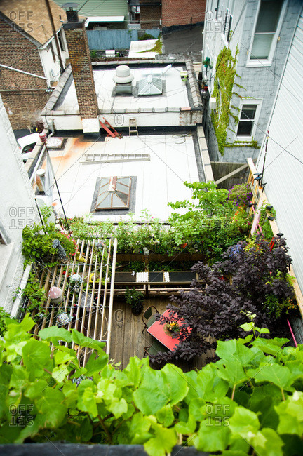 Brooklyn, New York - June 19, 2012: Overhead view of Alex Aguilar's garden