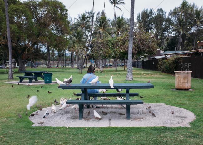 Woman feeding flocks of birds in park