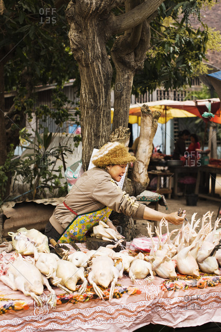 Luang Prabang, Laos - January 27, 2009: Chicken vendor at morning market, Luang Prabang, Laos