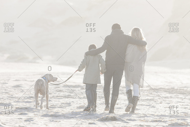 Back view of family walking on the beach with dog