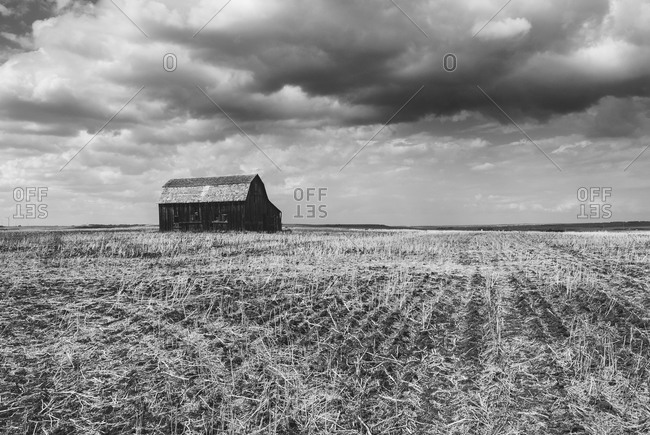 A barn in a harvested field