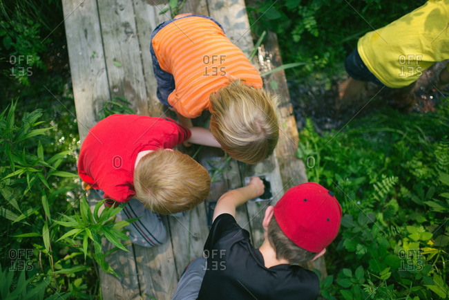 Children collecting specimens while exploring nature