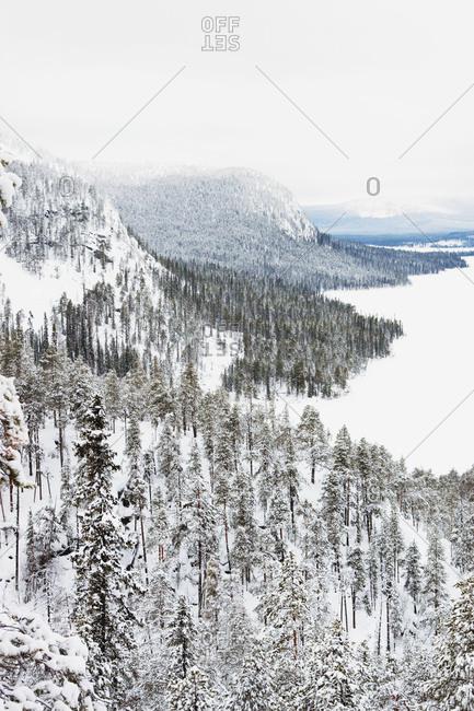 Sloping winter landscape