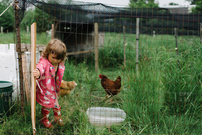 Little girl in a chicken pen
