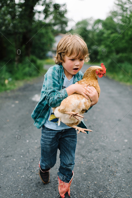 Little boy carrying a chicken
