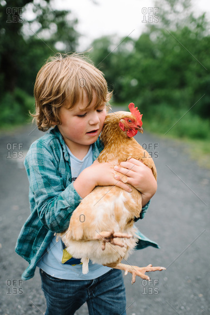 Little boy holding a chicken