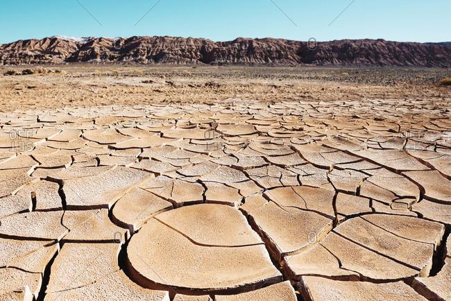 Dry cracked earth in the Atacama desert