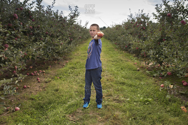 Boy holding up apple in orchard