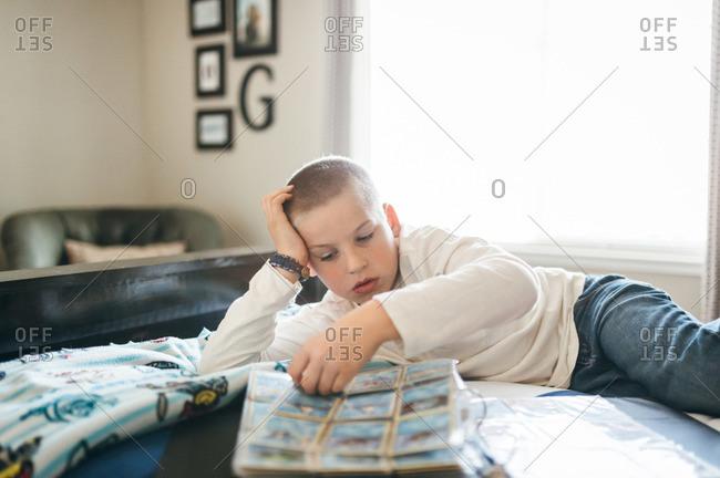 A boy organizes his baseball card collection