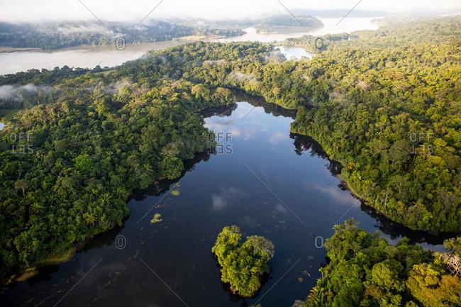 Waterways through jungle landscape