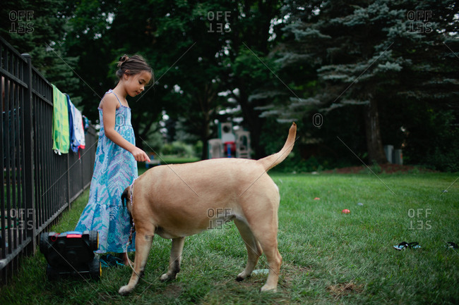 Dog sniffing little girl's dress in yard