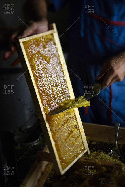 Uncapping frame of honey