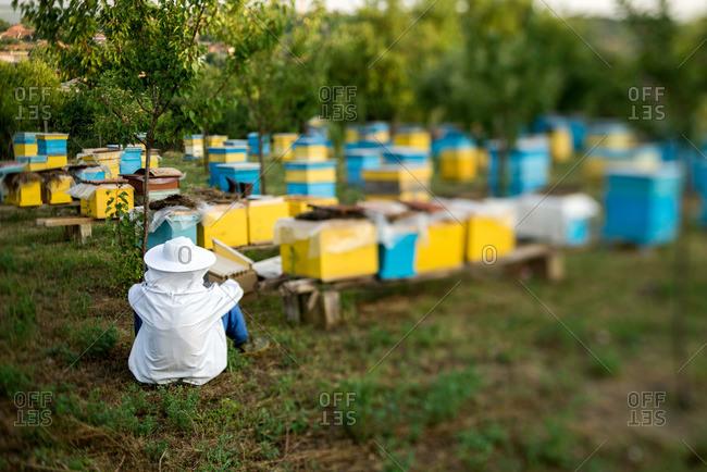 Resting beekeeper