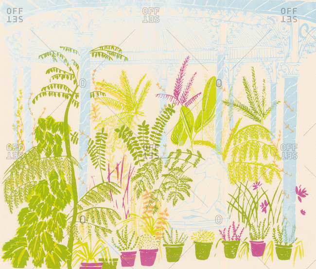 Potted plants in a conservatory