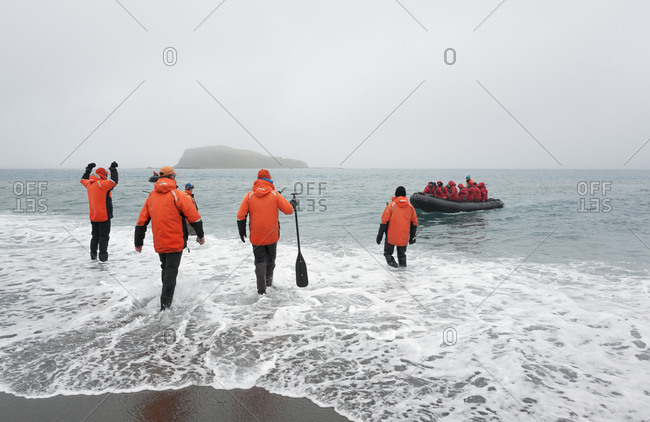 Four people wading into the ocean on South Georgia towards a rubber boat
