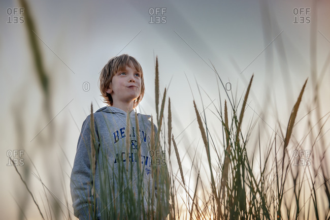 A boy stands next to wetland grasses